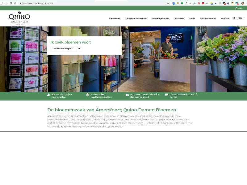Tekst, website, Quino Damen, Amersfoort